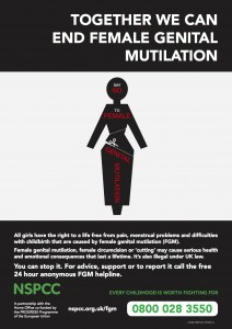 End FGM Poster