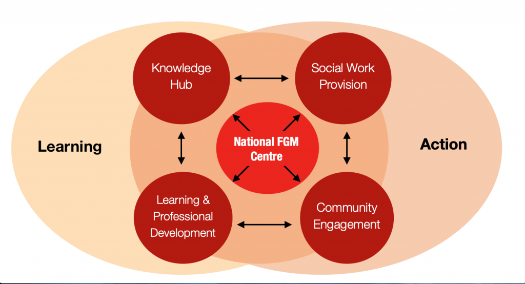 A diagram of the national fgm centre's four areas of work