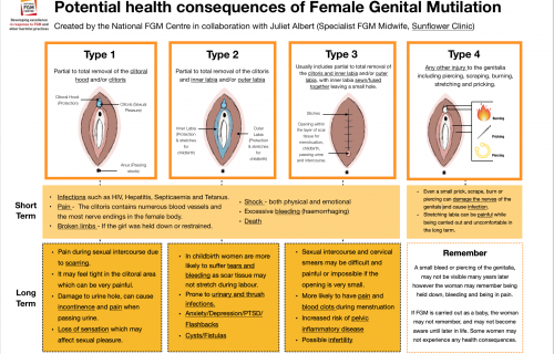 FGM Health Infographic Image